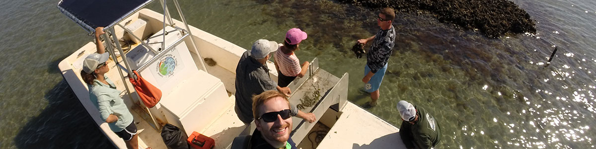 UNC-Institute-of-Marine-Science-IMS-Fodrie-Lab-oyster-reef-photo