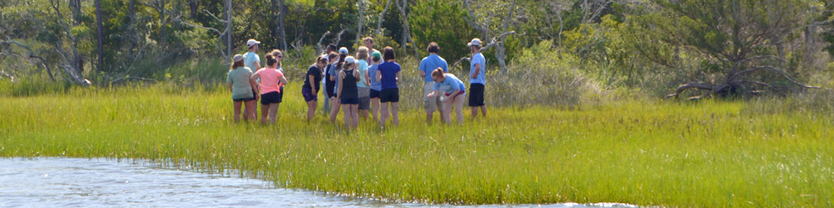 UNC-Institute-of-Marine-Science-IMS-Piehler-undergraduate-class-in-the-field-photo