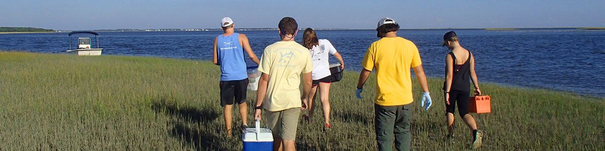 UNC-Institute-of-Marine-Science-IMS-marsh-field-work-photo