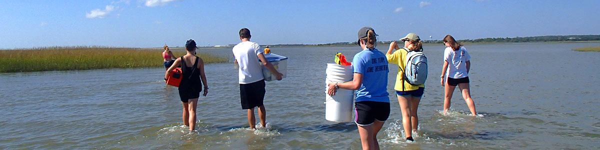 UNC-Institute-of-Marine-Science-IMS-salt-marsh-field-work-2-photo