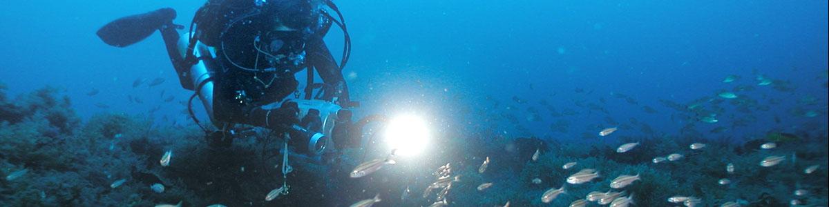 IMS-Institute-of-Marine-Sciences-scuba-AAUS-dive-program-03-1200×300